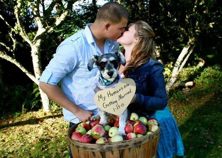 Hanna & Nick Brown Wedding, Oregon